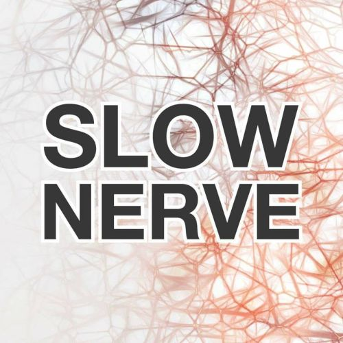 Slownerve