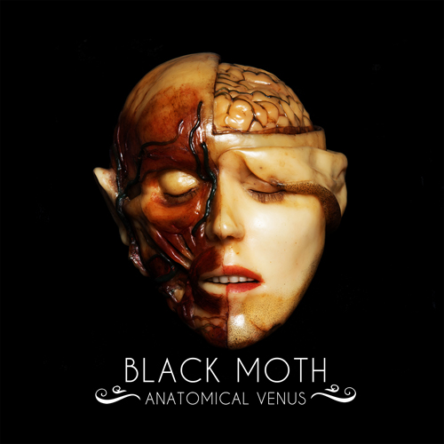 Black moth anatomical venus